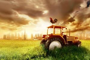 Agrifer S.A. tractor